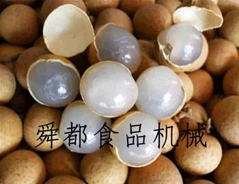 大枣 桂圆 龙眼 葡萄干空气能烘干房空气能烘干房